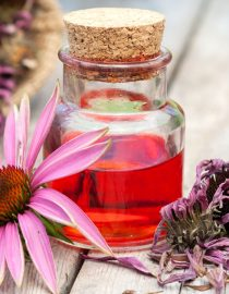 Using Herbs for Kidney Cancer Treatment