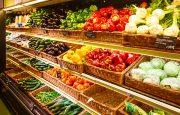 Food for Kidney Cancer