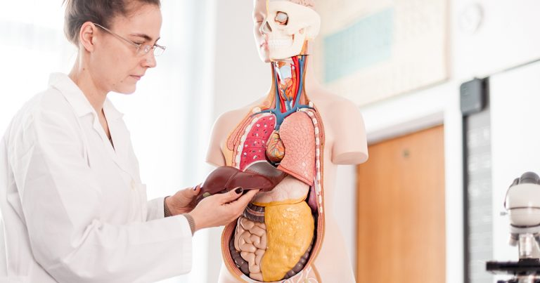 Is Liver Cancer Fatal Understanding The Dangers And Complications